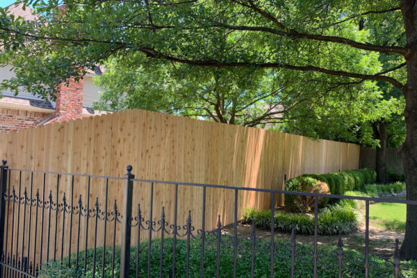 Privacy and Ornamental Iron